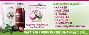 ace maxs